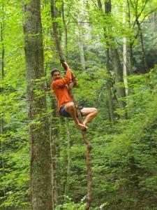 Barefoot Tree Climb